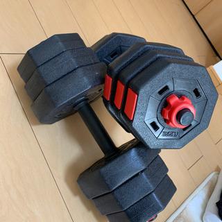 ダンベル 10kg × 2  腹筋ローラーとマット