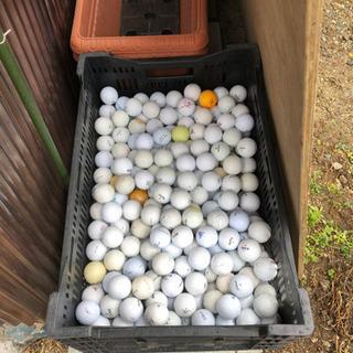 ゴルフボール(ロストボール)