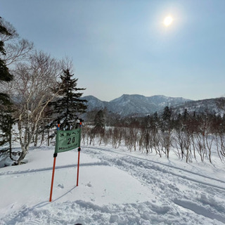 スキー、スノーボード教えます!《札幌国際》