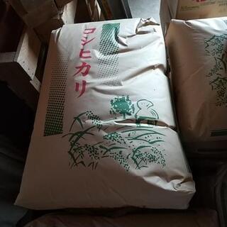 🍚コシヒカリ🍚特別減農薬米❗️30キロ12000円😋お安くお譲り...