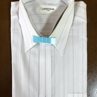 Yシャツ 3個セット  CLOVER PIGEON L