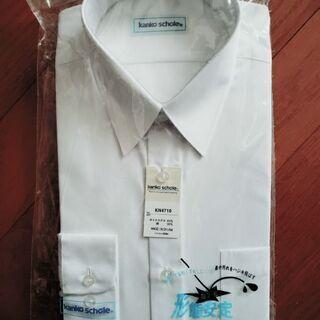 学生服 ワイシャツ(新品)