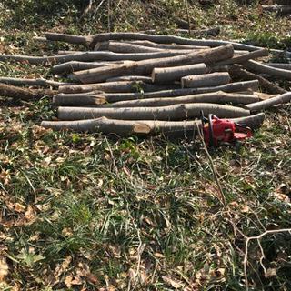 薪 原木 お譲りします。