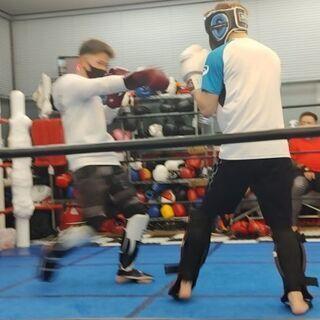 キックボクシング無料体験