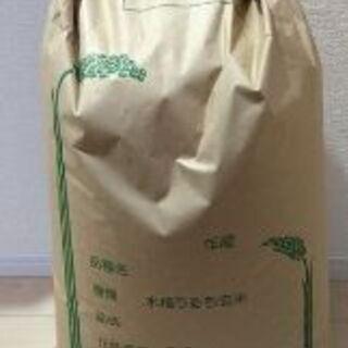 ☆★☆新米 埼玉県産コシヒカリ玄米30kg☆★☆