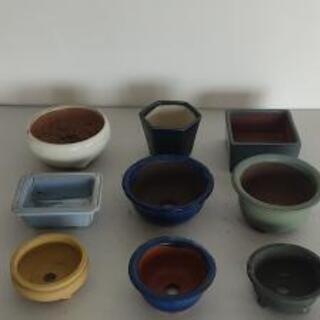 📣 小鉢セット