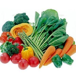 福島中央市場内での、青果店での仕分けや、ピッキング、野菜の袋詰め...