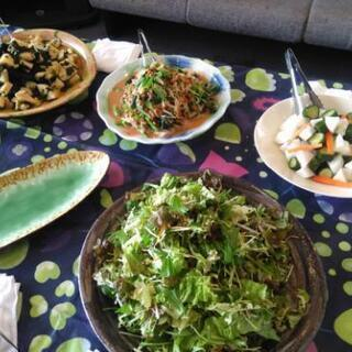 磯子区内でお弁当はじめます 創業メンバー募集しております