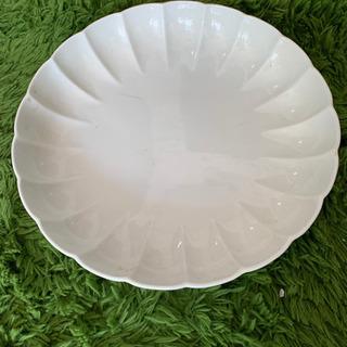 磁器白大皿