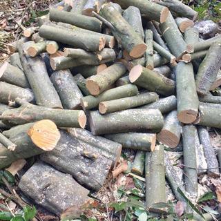 薪  原木  玉切り 300kg