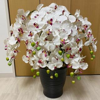 胡蝶蘭 造花 鉢植え