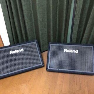 Roland SSM-151  フロアモニター ミュージカルスピーカー