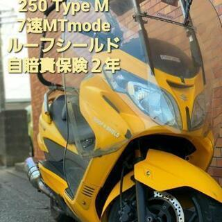 スズキ スカイウェイブ SKYWAVE 250 TYPEM CJ...
