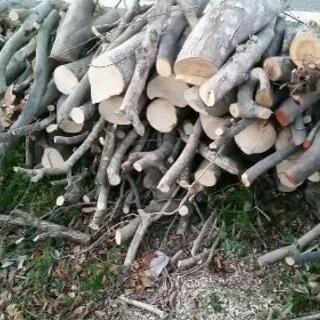 薪ストーブetc 広葉樹