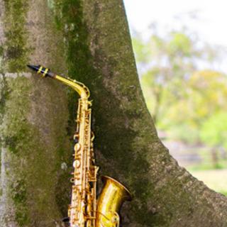 【無料体験あり】吹奏楽、JAZZ特化のオンラインサックスレッスン