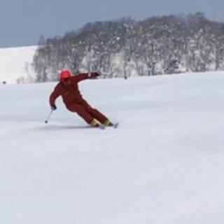 【初中級者歓迎】スキーレッスン テイネ他