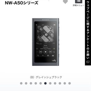 お話中!Sony WALKMAN ウォークマン NW-A55