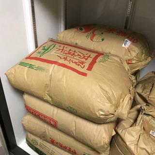 お米 玄米 あいちのかおり 30kg