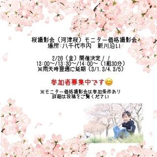 2/26【八千代】河津桜モニター価格撮影会開催!