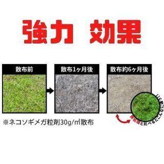 除草剤 強力 ネコソギメガ 業務用 7kg - 浜松市