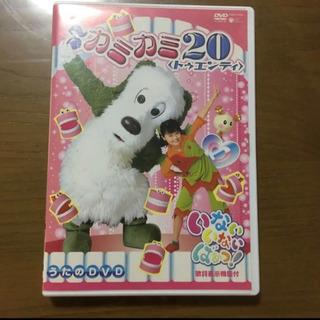【ネット決済】NHK いないいないばあっ! カミカミ20 DVD
