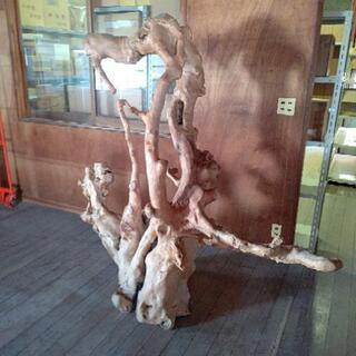 木の大きいオブジェ