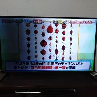【ネット決済】EAST 50V型4K対応液晶テレビ LE-50U...