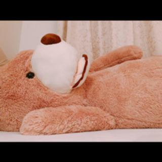 【ネット決済】特大クマのぬいぐるみ