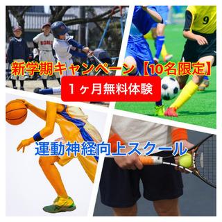 中川の必ず運動が得意になる教室!!【1ヶ月無料体験10名限定】【...