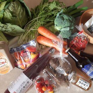 下妻・茨城の野菜詰め合わせの出張販売