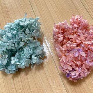 プリザーブドフラワー*紫陽花 ベビーブルー、ピンクパープル