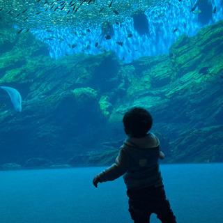 水族館🦈公園に行けるお友達募集中