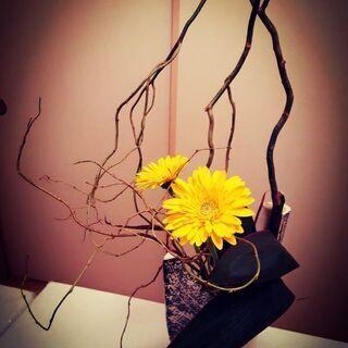 気軽にお花を楽しむ会です(*^^*)