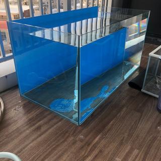 (取引中)90センチガラス水槽セット