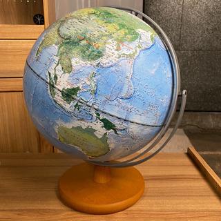 レイメイ藤井 地球儀 全回転 土地被覆タイプ 高さ×約40…