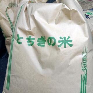令和2年 栃木県産 あさひの夢 玄米 20キロ ⑦