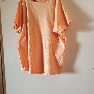 10L Tシャツ オレンジ