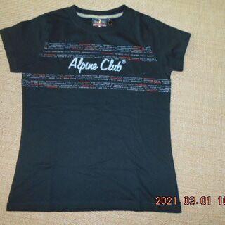 スイスで購入 tシャツ 新品未使用