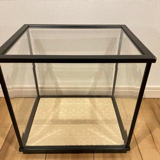 ガラス製ショーケース-3