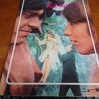 映画パンフレット  若草の萌えるころ  劇場公開日 1969年3...