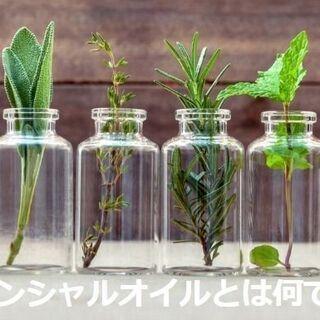 【大阪南部エリア限定】エッセンシャルオイルを利用したビジネ…