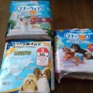 犬の紙オムツ、Sサイズ無料で譲ります