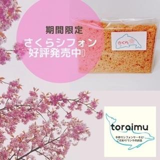 春だけの季節限定商品!桜🌸シフォンケーキ新発売‼️