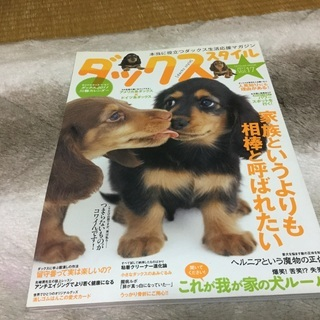 子犬マナー本 02