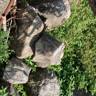 庭石10個以上 − 沖縄県