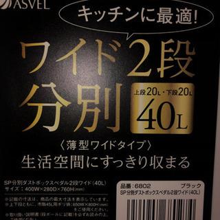 【ゴミ箱】分別ダストボックスペダル2段ワイド(40L)★ブラック