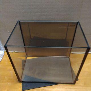 水槽3個 オールガラス25cm、付属品付、自作バックスクリーン付
