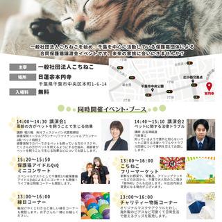 【千葉市開催】3月28日(日)保護猫譲渡会 同時開催イベントあり