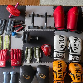 格闘技、キックボクシング、エクササイズ