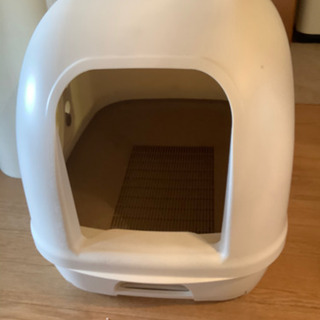 猫ちゃんのおトイレ